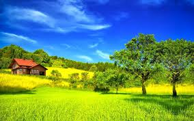 widescreen green grass mountains for desktop hd with most