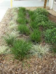 florida friendly landscaping south florida property management