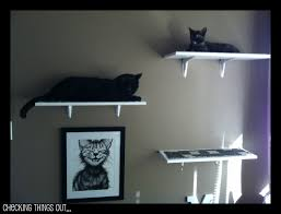 Shelves For Cats by Diy Cat Shelves For Under 100 Series Part 2