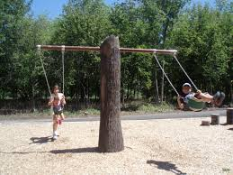 natural trees around near simple way and casual kids tree swings