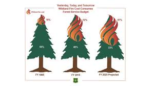 Wildfire Tools by Wildland Policy News