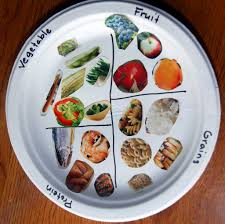 food plate food pyramid middle and child