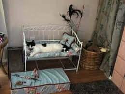 161 best cat beds images on pinterest cute kittens cat