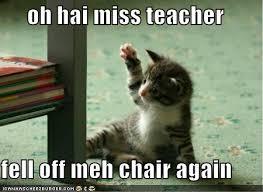 Funny Kitten Meme - 45 top selection of funny kitten pictures