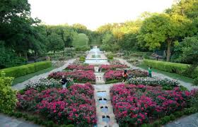 Ft Worth Botanical Gardens Weddings by 95 Things To Do In Fort Worth
