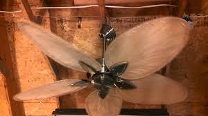 Ceiling Fan With Palm Leaf Blades by Fanimation Windpointe Ceiling Fan With Palm Leaf Blades Youtube