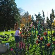 Rock Garden Bellevue Bellevue Botanical Garden I Alpine Rock Garden Gardens