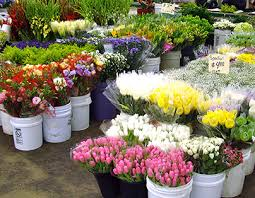 los angeles florist bloomin news the los angeles flower market