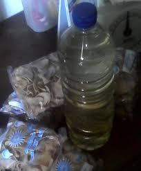 Minyak Kelapa 5 Liter tumor dan minyak kelapa baltyra