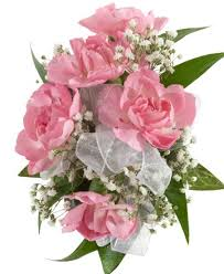 pink corsage mini carnation corsage pink royer s flowers and gifts flowers