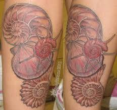 28 seashell tattoos ocean tattoos starfish seashell sea