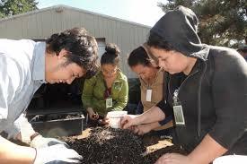 native plant nursery portland oregon native plant center metro