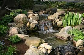 Backyard Waterfall Ideas by Garden Waterfall Plant Ideas
