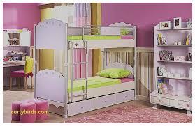 Green Boy Bedroom Ideas Best Of Pink And Green Kids Room Curlybirds Com