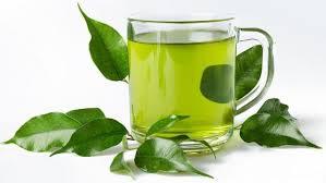 Teh Hijau merk teh hijau yang bagus untuk diet all about food