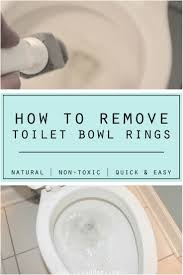 best 25 toilet bowl ring ideas on pinterest diy glass cleaning