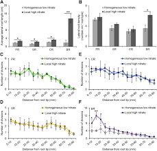 square root of 289 root type specific reprogramming of maize pericycle transcriptomes
