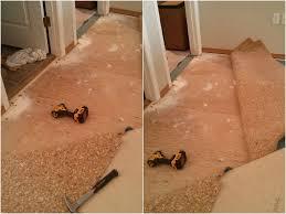 Squeaky Laminate Floor Fix 100 Squeaky Floor Screws Carpet Best 25 Hardwood Floor