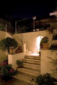 for this small garden in london we used a hunza wall down light in