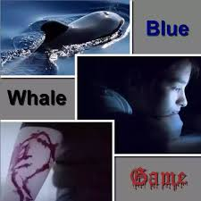 Challenge Deadly Blue Whale Challenge Deadly Experiment Exposed Random Tyms