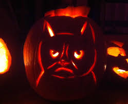 halloween cat meme grumpy cat u0027s brother revealed pokey is an only slightly less