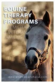 Radio Flyer Spring Horse Liberty Equine Therapy For Military Veterans