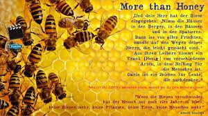 bienen sprüche gc47xec more than honey unknown cache in oberösterreich austria