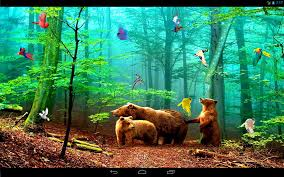 forest hd apk free forest birds live wallpaper 1 01 apk android