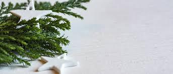 artificial christmas trees lights u0026 home decor christmas central