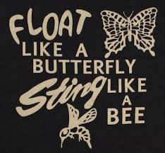 sting like a bee and float like a butterfly search set