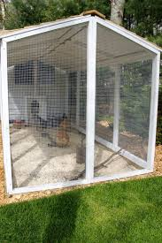 how to predator proof the chicken run tilly u0027s nest