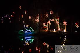 tanglewood christmas lights nc paws in the park