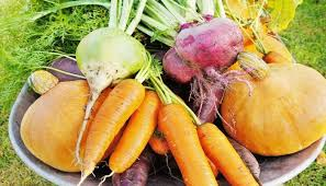 A Root Vegetable - ingredients archives fresh healthy eats