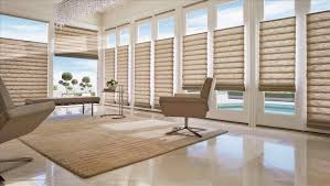 Blinds For Wide Windows Inspiration Wide Roman Shades Boby Date