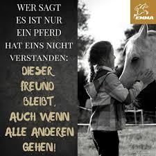 pferdesprüche 140 best pferdesprüche images on equestrian