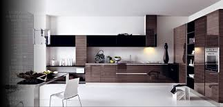 modern italian kitchen design ideas modern kitchen design inspirations from cesar modern modern