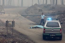 Wildfire Credit Union Hours by Portugal Fires Kill More Than 60 Including Drivers Trapped In