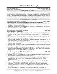 Insurance Sample Resume Insurance Underwriter Resume Director Of Software Engineering