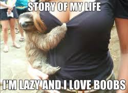 Rape Sloth Meme - rape sloth