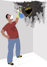 get rid of musty smell cheap how to get rid of mold and mildew in