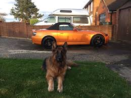 S2000 S S2000s And Dogs My Two Favourite Things Post Yours S2000