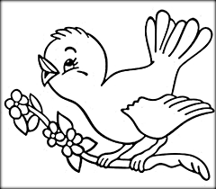 image bird coloring pictures pages print tryonshortscom sheet