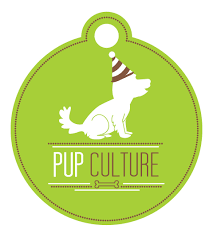 pet sitter author at dog walking and pet sitting in minneapolis