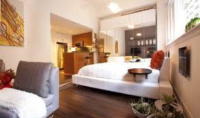 Studio Apartment Design Ideas Innovative Manificent How To Decorate A Small Studio Apartment 50