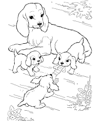 puppies and kittens coloring pages puppies coloring pages and mom