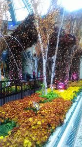 Bellagio Botanical Garden Bellagio Conservatory And Botanical Gardens And Photo Gallery
