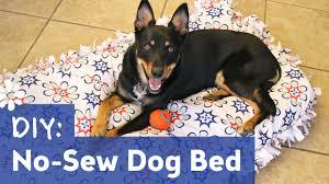 diy diy dog bed no sew decor idea stunning wonderful to diy dog