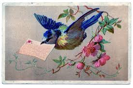 vintage clip art bluebird with cherry blossoms the graphics fairy
