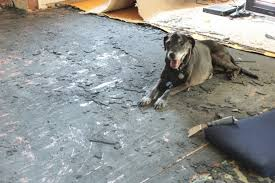 How To Pull Up Carpet From Hardwood Floors - preparing for hardwood floor restoration open letter to our