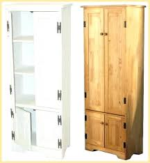 tall kitchen cabinet with doors shallow storage cabinet with doors tall storage cabinets with doors